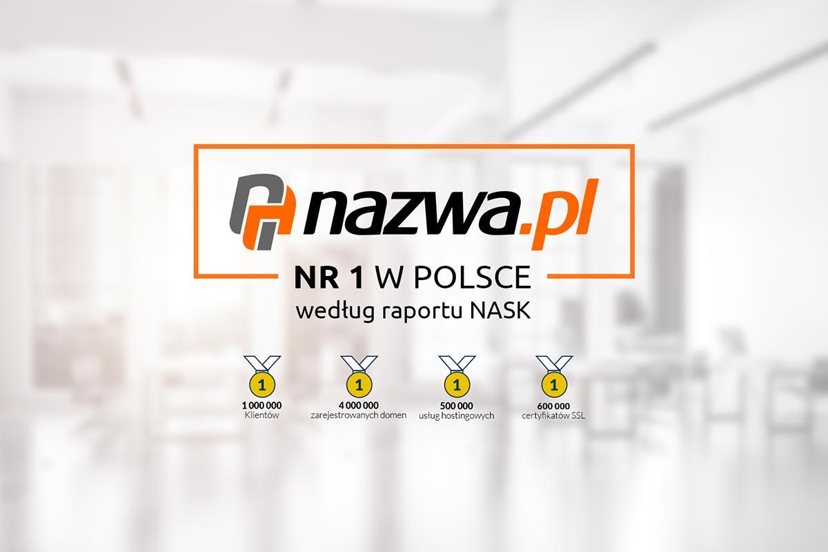 rynek polskich domen
