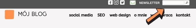 wyszukiwarka nablogu