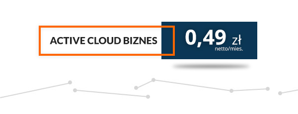 ACTIVE CLOUD BIZNES