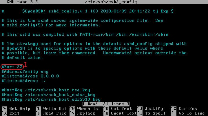 vps linux ssh port sprawdzenie